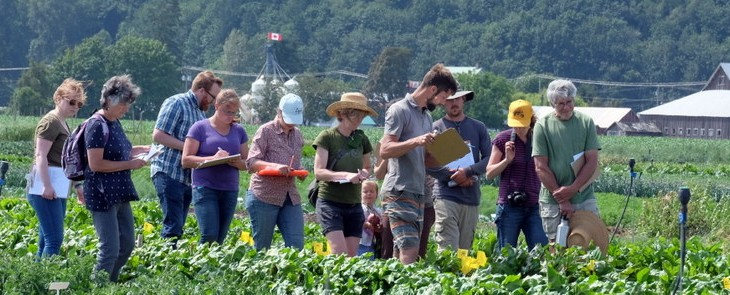 June 30 Beet Trial Field Day at Local Harvest Farm